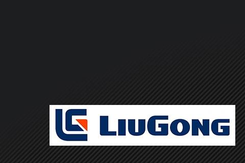 Опорно поворотное устройство LiuGong от компании Автогоризонт