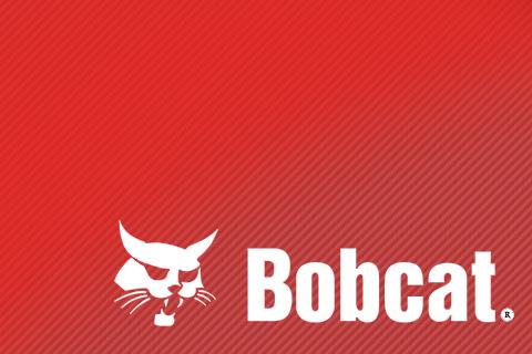 Гидроцилиндры Bobcat