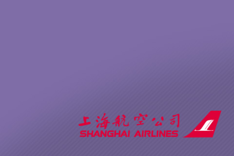 Поршневая группа Shanghai