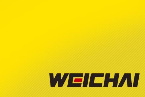 Купить новый двигатель Weichai